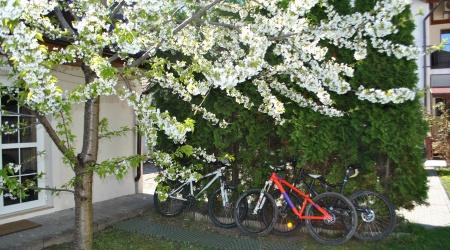 Utilizare biciclete la apartamentele Alpha Beta Delta Kappa